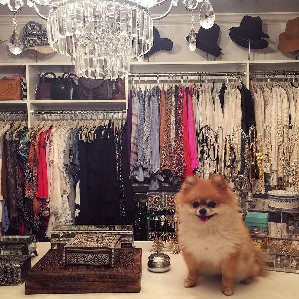 Shay Mitchell walk in closet