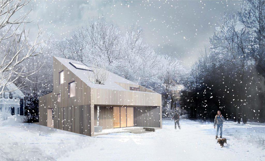 Proiectul castigator: Aldea Silviu, SkyLight House